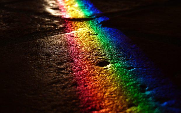 LGBT P20