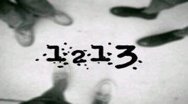 Blog 1213D