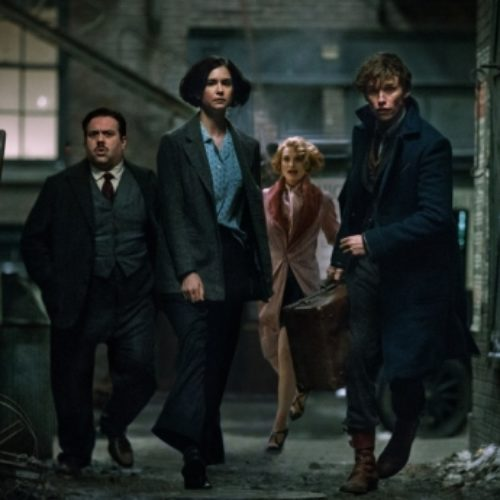 Is 'Fantastic Beasts and Where to Find Them' a reflection of LGBT rights?