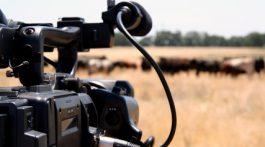 documentary-freelance