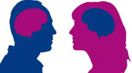 Brain_s_gender