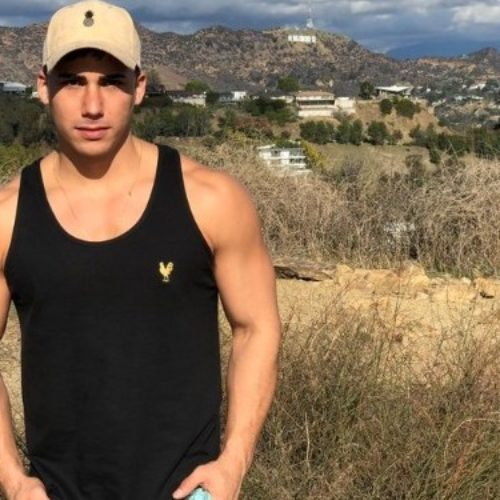 Two more men have come forward to accuse gay porn star Topher DiMaggio of rape