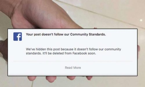 Facebook bans user's puppy photo, and it's all just a hilarious misunderstanding