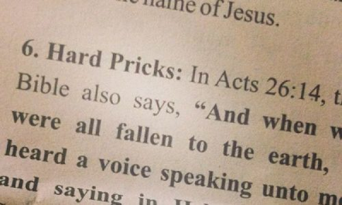 Hilarious: The Pun The Church Editors Hadn't Intended