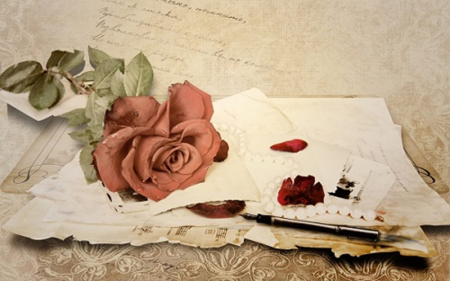THE OPEN LOVE LETTERS