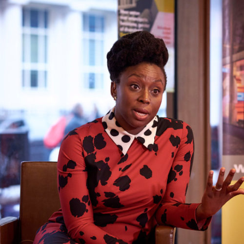 Chimamanda Ngozi Adichie Draws Heat For Her Comments About Trans Women