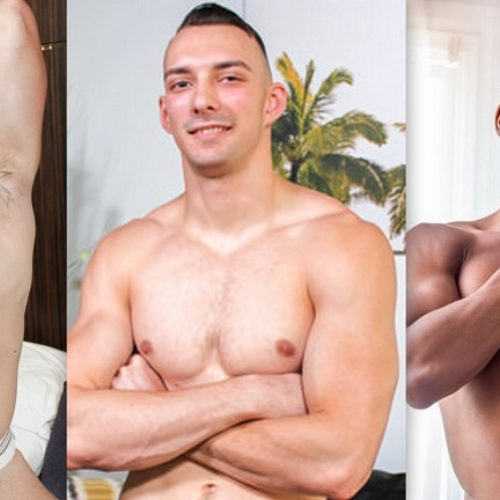 Some Gay Porn Stars Were Cast in Ryan Murphy's Hollywood