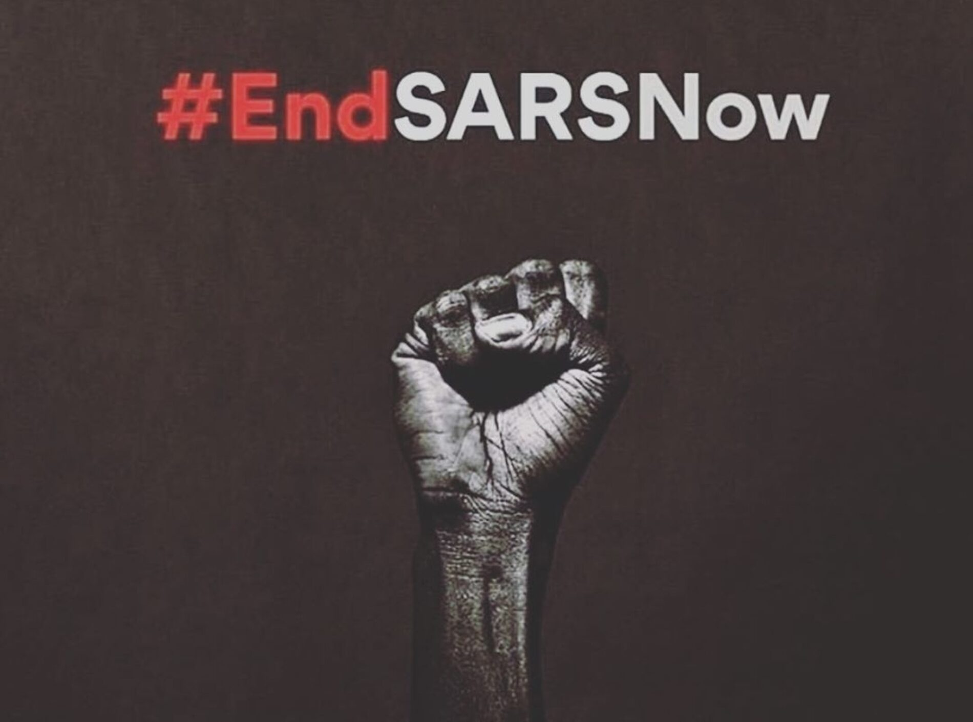 Nigeria Should #EndSARS For EVERYONE