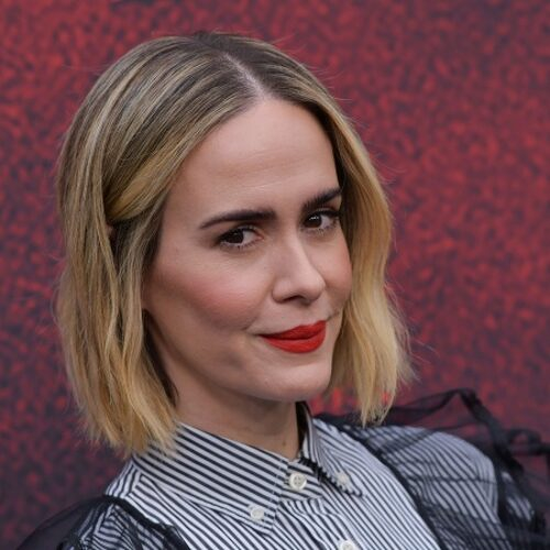 Sarah Paulson faces backlash from Gay Twitter over the Use of Pronouns